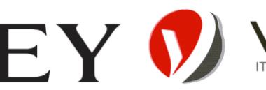Vantisco and Wiley partnership